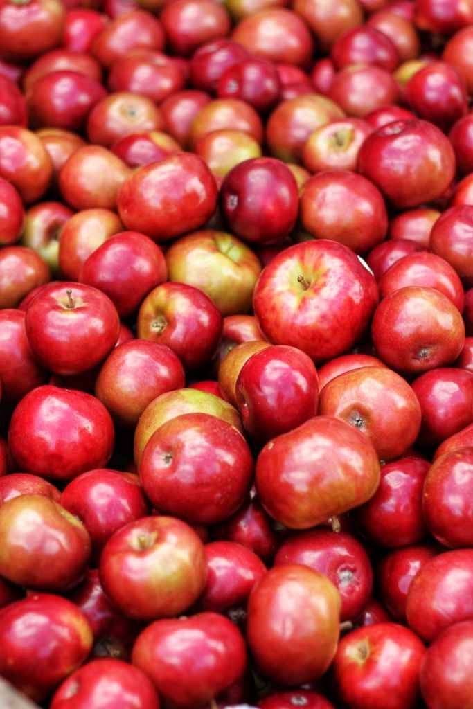 Apples have high water content - great for a Sjogren's Syndrome diet.