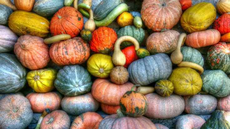 Winter squashes contain antioxidants which are great for a Sjogren's Syndrome diet.