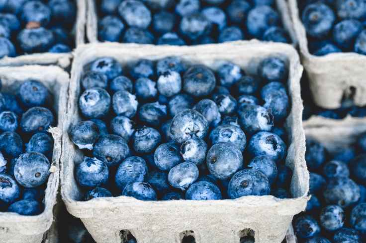 Blueberries are loaded with antioxidants which are great in a Sjogren's Syndrome diet.
